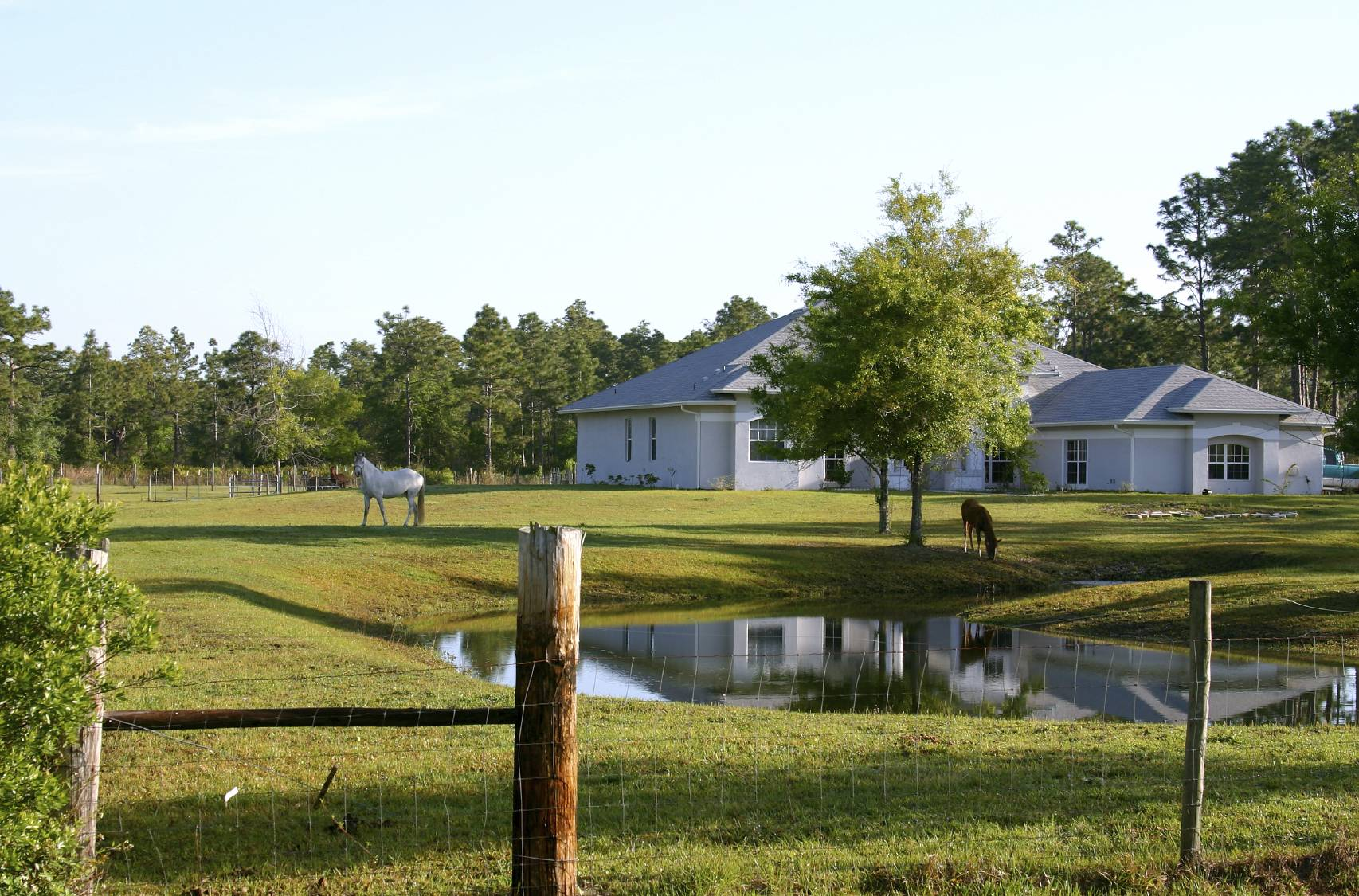 Amazing East Texas Farm Ranch Sale Owner Property House Plans 85645 Inspirational Interior Design Netriciaus