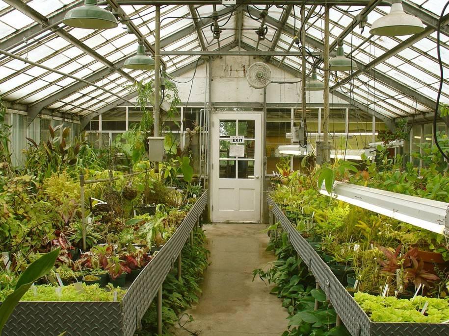 techniques greenhouse gardening interior design inspiration - Greenhouse Design Ideas