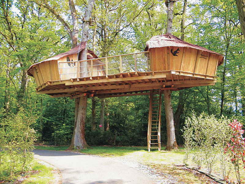 Free treehouse plans 30 diy tree house plans design - Tree house plans for adults ...