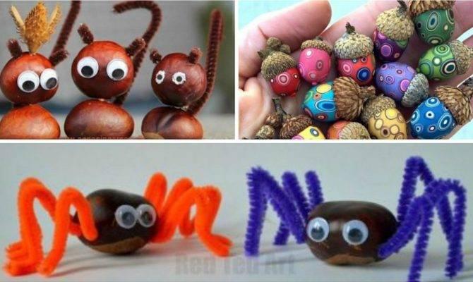 Acorn Chestnut Crafts Handy Ideas Houz Buzz