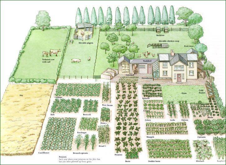 Acre Homestead Layout Garden Design Vegetable - House ...