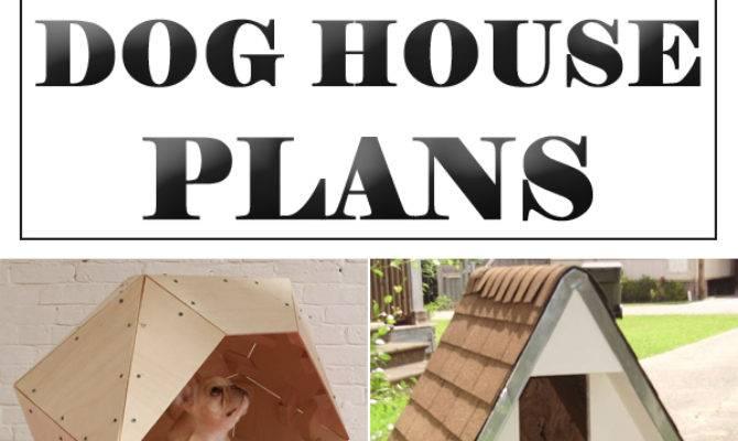 Amazing Diy Dog Houses Plans