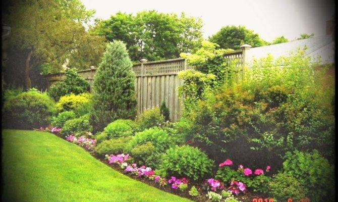 Antique Endearing Backyard Landscape Design Photos Build