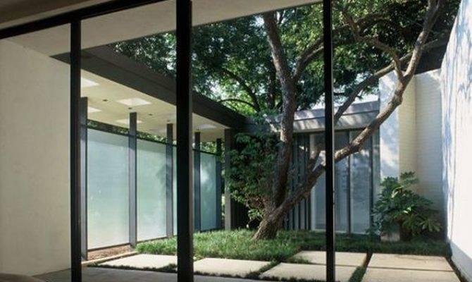 Atrium House Ideas Modern