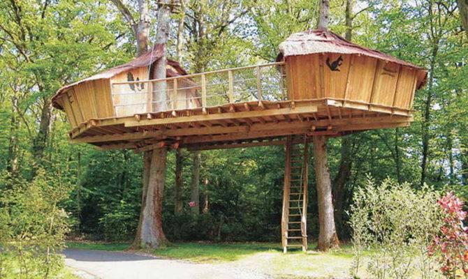 Awesome Tree House Plan Design Plans Smalltowndjs