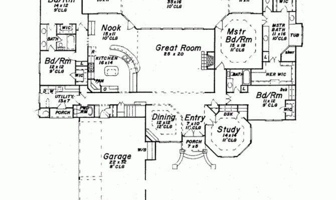 Back Single Story Luxury House Plans