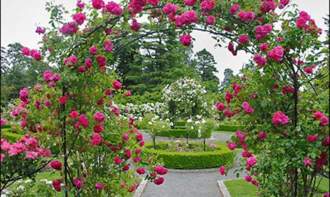 Beatiful Rose Garden Ideas Design Bookmark