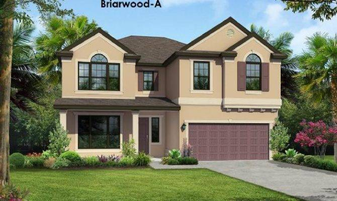 Bedrooms Houses Tampa Mitula Homes