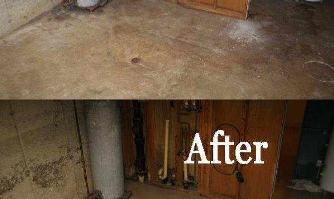 Best Cheap Flooring Options Ideas Pinterest