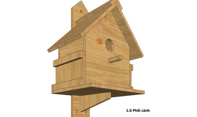 Bird House Design Build