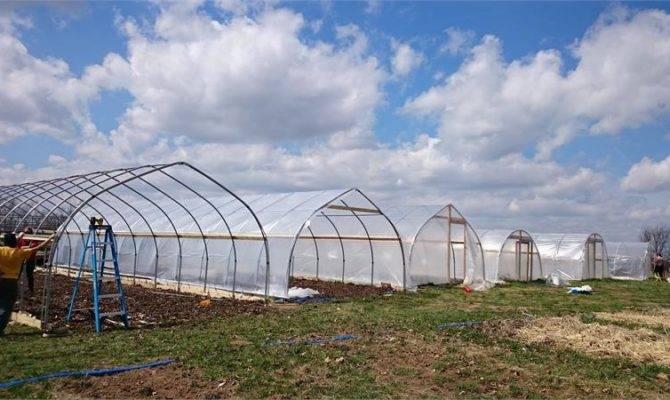 Build Greenhouse Hoop House