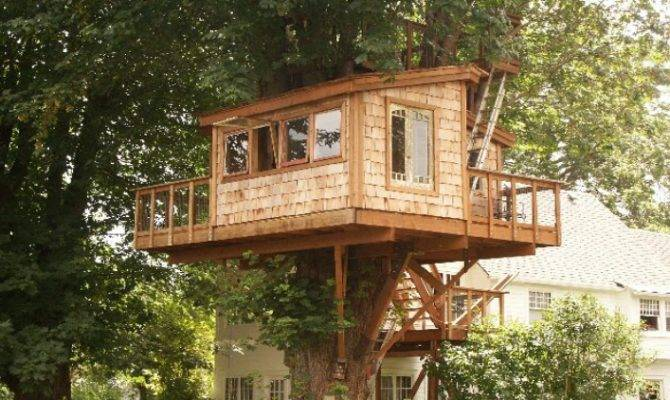 Build Simple Treehouse Without Tree Wooden Global