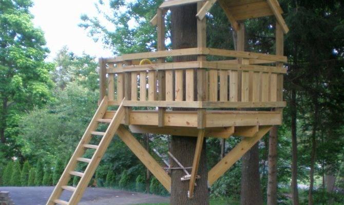 Build Tree House Easy Tips Best Design