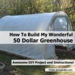 Build Wonderful Dollar Greenhouse