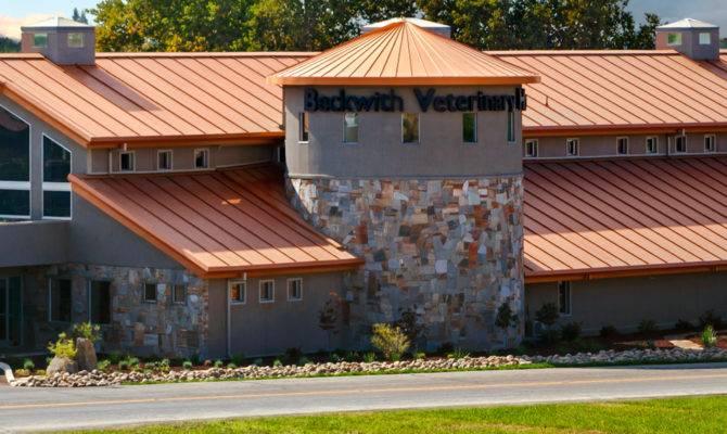 Building Roofing Everlast Metal