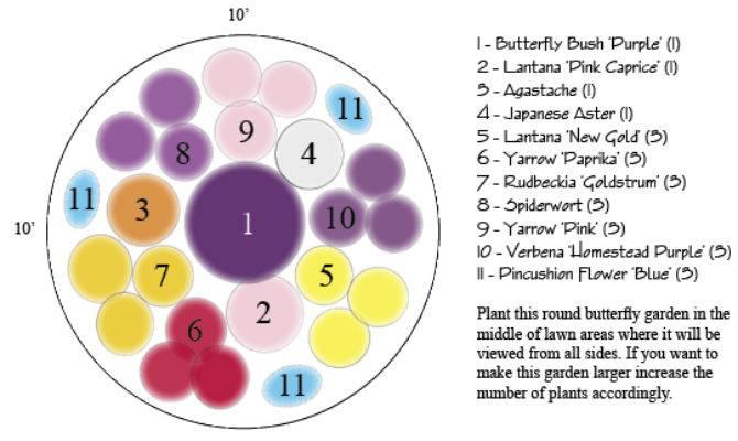 Butterfly Garden Designs