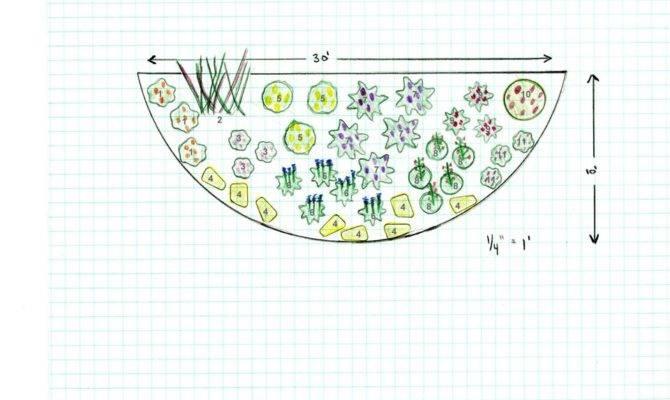 Designing Butterfly Garden