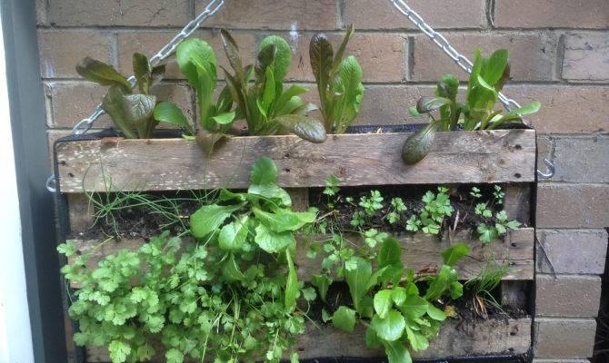 Diy Garden Ideas Using Old Pallets Hobby
