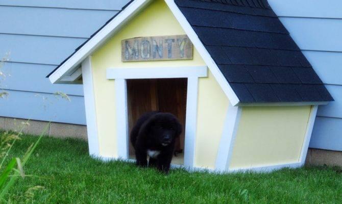 Dog House Plans Home Design Garden