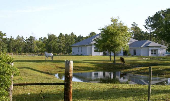 East Texas Farm Ranch Sale Owner Property