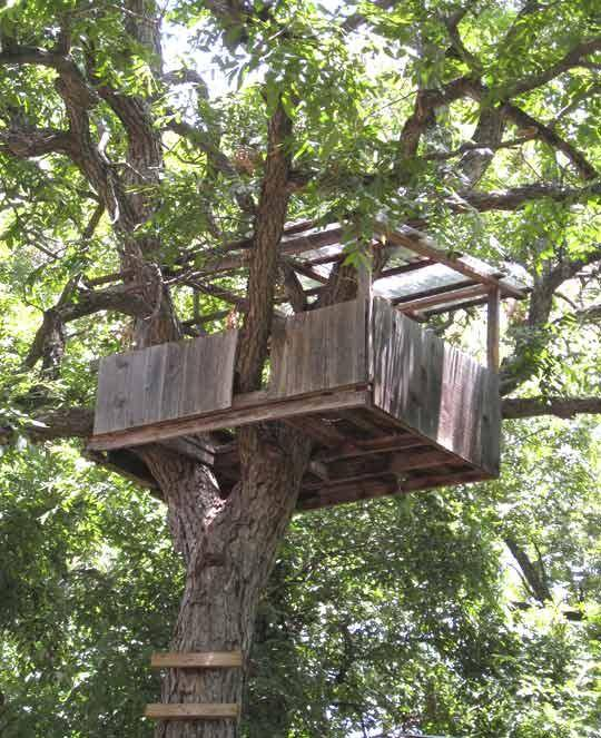 Easy Treehouse Plans Pdf Build Flat Roof