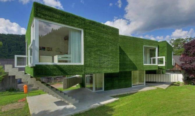 Eco Green House Designs Design Ideas
