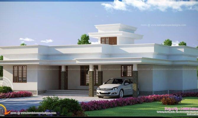 Flat Roof House Plans Designs Single Storey Houses