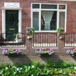 Flowers Front Dutch House Netherlands