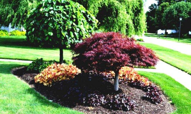 Front Yard Landscaping Ideas Zone Garden