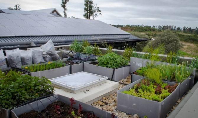 Green Living House Plan Garden Home