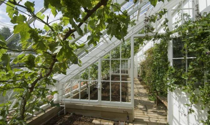 Greenhouse Designs Which One Fits Your Needs Interior Design