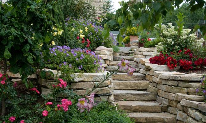 Houston Lifestyles Homes Magazine Gardening Steps
