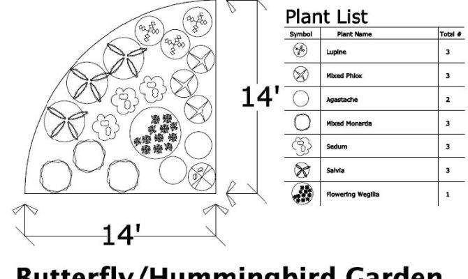 Hummingbird Garden Ideas Native Design