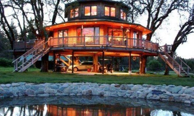 Incredible Tree House Hotels Huffpost