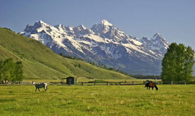 Jackson Land Cattle Ranch Sale Million