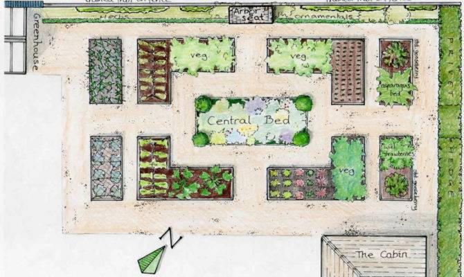 Layout Plans Raised Bed Privet Hedge Plants Fence Ideas