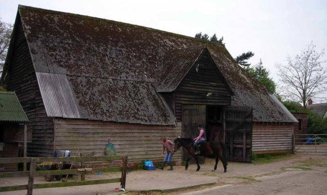 Medieval Home Decor Horse Gothic Design