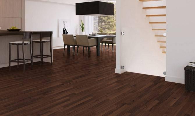 Modern Brown Nuance Best Interior Designs Using Oak