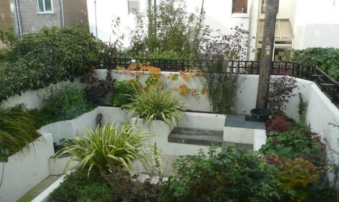 Modern Courtyard Garden Katherine Edmonds Design