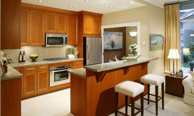 Open Kitchen Design Ideas Living Dining Room