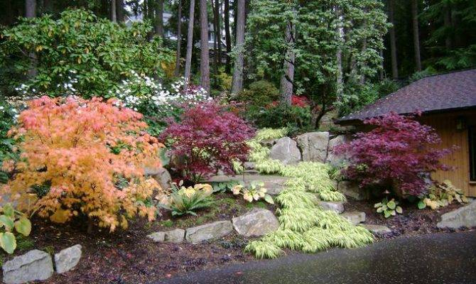 Pacific Northwest Landscaping Ideas Traditional Landscape Cambium