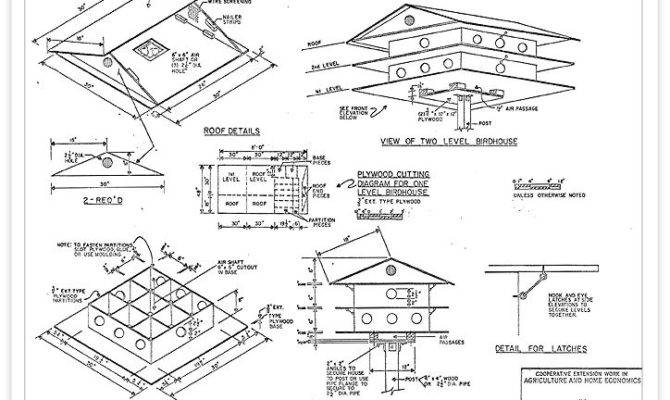 Photos Bird House Plans List