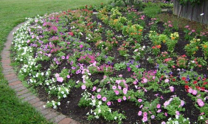 Prairie Rose Garden Ideas Galore Idea