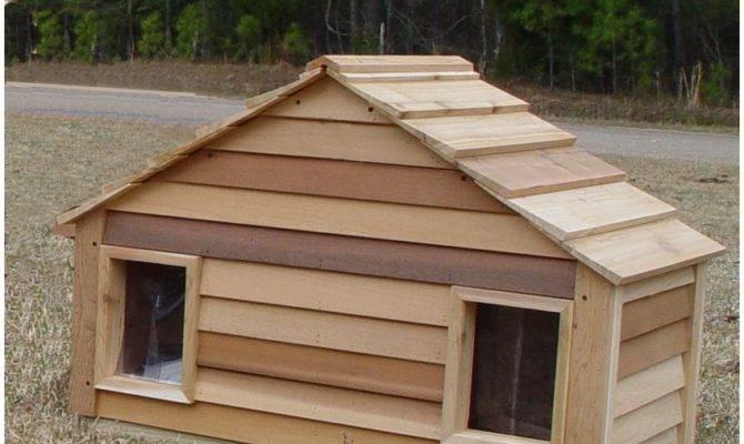 Small Duplex Dog House