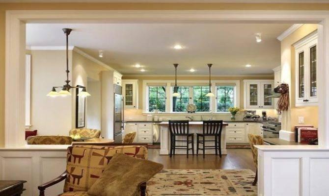Small Kitchen Living Room Open Floor Plan Wood Floors