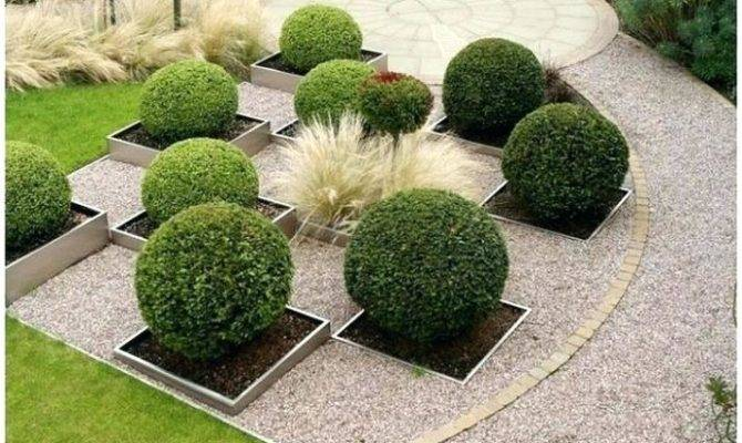 Southern Living Landscaping Ideas Boxwood Garden