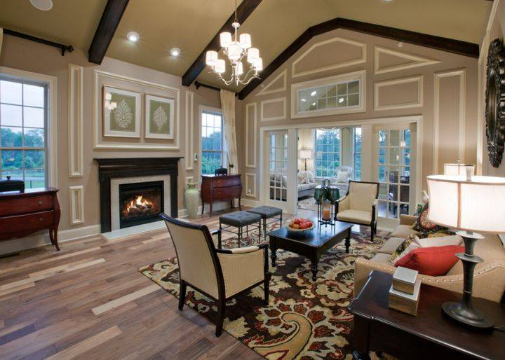 Spacey Cathedral Ceiling Living Room Designs
