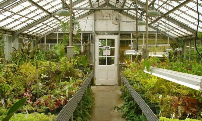 Techniques Greenhouse Gardening Interior Design Inspiration
