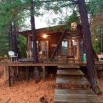 Tiny Frame Cabin House Websites