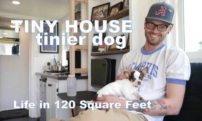 Tiny House Tinier Dog Living Square Feet Small